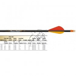 EASTON POWERFLIGHT STANDARD SAGETI CARBON